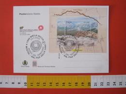 A.14 ITALIA ANNULLO 2005 BIELLA MOSTRA FILO DELLA LANA WOOL GOMITOLO MUSEO TERRITORIO TESSILE CARD ARIETE PALERMO BRONZO - Textile
