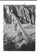 CPM San Daniele  Ponte Di Pinzano Dopo Alluvione 4/11/1966  Friule Foto Gallino  Circulé1967 TBE Pont Détruit Maintenant - Udine