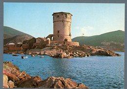 °°° Cartolina - Isola Del Giglio Faro Nuova °°° - Grosseto