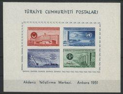 TURQUIE BLOC FEUILLET Cote 75 € N° 4 Neuf * MH. (trace Au Verso, à Gauche Sur La Photo 2) - 1921-... République