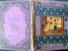 1888 Voyages Au Pays Des Défauts M.Bertin Coll.Hetzel Vignette G.Roux Ptebib Blanche - 1801-1900