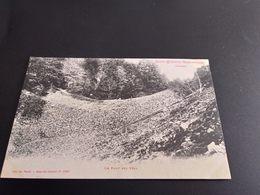 CPA (88) Saint Etienne De Remiremont.  Le Pont Des Fées. Tampon Café. (I.198) - Saint Etienne De Remiremont