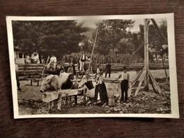 Oude Postkaart  Mensen Geven Dieren Water  No . 3147  ROMANIA - Roumanie