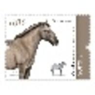 Portugal ** & Autochthonous Breeds Of Portugal, Soraia Horse, III Grupo 2020 (81680) - Ferme