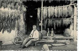 Vresse Sur Semois - Membre - Le Vieux Planteur De Tabac - Vresse-sur-Semois