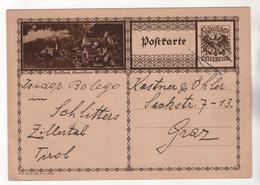 +3953, Österreich > Ganzsachen, Bildpostkarte, Hallstatt - Entiers Postaux