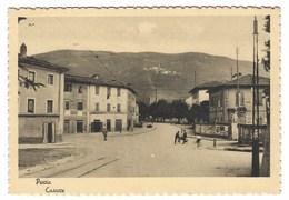 3493 - PESCIA PISTOIA CASACCE ANIMATA 1950 CIRCA - Italia