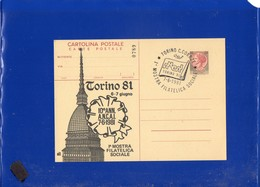 ##(PAP1)-1981-Cartolina Postale L.130, Stampa Privata-repiquage 10° Anniversario A.N.C.A.I. Torino - Ganzsachen
