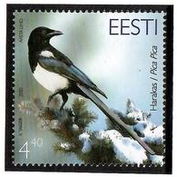 Estonia 2003 . Bird Of The Year (Magpie). 1v: 4.40.  Michel # 456 - Estonia