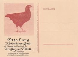 """Werbung / Werbepostkarte """"Rhodelaender-Zucht, Otto Lang Trossingen"""" (AE63) - Advertising"""