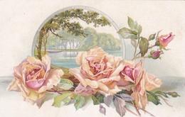 Fiori  ,  Le Rose Rosa E Il Paesaggio Sul Lago Nebbioso - Fiori