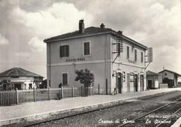 Lazio - Roma - Cesano Di Roma - La Stazione - - Altri