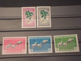 AFGHANISTAN - 1963 AGRICOLTURA  5 VALORI  - NUOVI(++) - Afghanistan