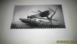 Fauna Buzin - Libel - Libellule - Dragonfly - Libellen ( Black & White Sheet / Noir Et Blanc / Zwart-Wit Velletje) - Black-and-white Panes
