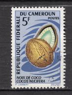 Cameroun, Cameroo, Fruit, Noix De Coco, Coconut - Fruits
