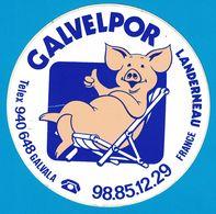 AUTOCOLLANT CALVELPOL LANDERNEAU FRANCE GALVALA - Aufkleber