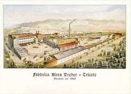 TRIESTE - FABBRICA BIRRA DREHER FONDATA NEL 1865 - DISEGNO PANORAMICO DELLO STABILIMENTO - Trieste
