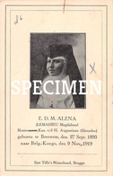 E.D.M. Alena - Lemahieu Magdalena - Beernem - Beernem