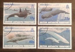British Antarctic Territory (1996) Whales,  Used - Territoire Antarctique Britannique  (BAT)