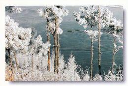1 AK China * Jilin Eine Landschaft In Der Provinz Jilin -  Sie Ist In Das Naturschutzprogramm Der UNESCO Aufgenommen * - China