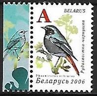 BELARUS - MNH 2006 : Garden Birds Of BELARUS :     Black Redstart  -  Phoenicurus Ochruros - Pájaros Cantores (Passeri)