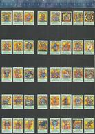 CARNAVAL STICHTING VASTENAVOND BERGEN OP ZOOM KARNAVAL KARNEVAL Dutch Small Labels (De Kloof) - Luciferdozen - Etiketten