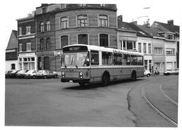 Autobus Bus (oldtimer) Oostende 1990 Photo 12,5x9 - Automobiles