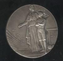Médaille Sous-Secrétariat D'Etat De L'Education Physique - Professionnels / De Société