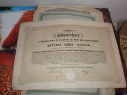 Reszveny A Magyar Olaj Es Zsiripari Kozpont Reszvenytarsasag 200 Korona Budapest 1916 Agramer Seifenfabrik  Kroat Zagreb - Hongrie