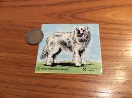 AUTOCOLLANT, Sticker, Chromo Croquettes Canina «nº3 MONTAGNE DES PYRÉNÉES» (chien) - Autocollants