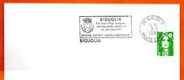 20 BIGUGLIA  SON VIEUX VILLAGE  1991 Lettre Entière N° MN 481 - Marcophilie (Lettres)