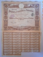 ACTION - ATELIERS & CHANTIERS De NICOLAÏEFF Du 07 Juillet 1911 - Industrie