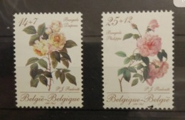Belgium 1990. Bengalen Philippe, Bengalen Desprez. Stamp Set. MNH - Rose