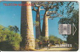 MADAGASCAR - Baobs, Used - Madagascar