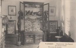 Fleurus , Pensionnat Des Soeurs De Notre Dame , Un Coin Du Musée - Fleurus