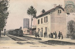 Rare Cpa Châteauvillain La Gare Belle Animation Avec Train Vapeur - Chateauvillain