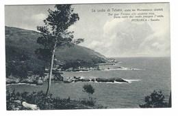 3538 - LA COSTA DI TELARO TELLARO VISTA DA MARAMOZZA LERICI LA SPEZIA 1920 CIRCA - Altre Città