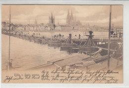 Köln Von Deutz Gesehen - Schiffbrücke - 1903 Nach Neheim / Links Oben Eckknick - Koeln
