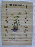 Culture Et Fabrication Du Papyrus – Hassan Ragab - EO 1980 – Peu Courant - Bricolage / Technique