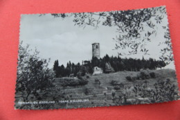 Vicenza Romano Da Ezzelino La Torre 1954 - Vicenza