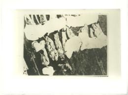 Carte Photo Les Infirmiers Du Dunkerque Descendant Les Corps Sur Un Challand Mers El Kebir Juillet 1940 - Oorlog 1939-45