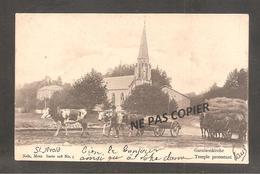 SAINT AVOLD  Temple Protestant  /attelages  Chevaux  Vaches  Oblit   1903 - Saint-Avold
