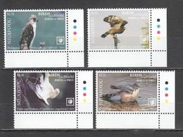 UU884 !!! EXCLUSIVE 2019 NIUAFO'OU FAUNA BIRDS OF PREY $8.5 US NOMINAL 1SET MNH - Aquile & Rapaci Diurni