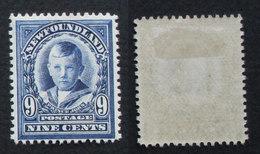 Terre Neuve  NEWFOUNDLAND 1911 9 C 96 Neuf * - 1908-1947