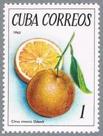 Kuba 1965 ** - Citrus - - Fruits