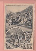 OLD POSTCARD -   WINE - GRUSS VON DER WEINLESE - Cartoline