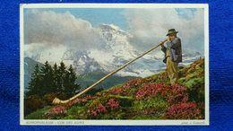 Alphornblaser Cor Des Alpes Switzerland - Svizzera