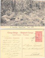 CONGO BELGE. CARTE POSTALE. LEOPARD. ENTIER 10c. 4 11 20. STANLEYVILLE POUR PARIS - Congo Belge