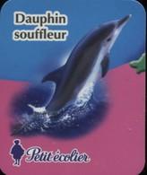 MAGNET DAUPHIN SOUFFLEUR PETIT ECOLIER - Magnets