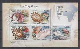 K963. Comores - MNH - 2011 - Nature - Fauna - Marine Life - Seashells - Pflanzen Und Botanik